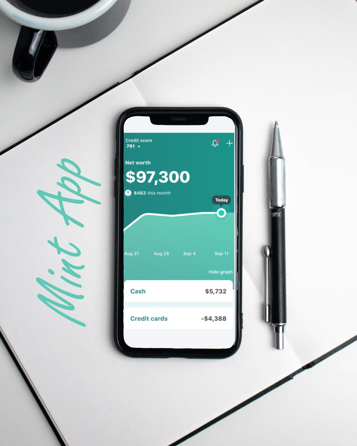 FinTech App 'Mint'